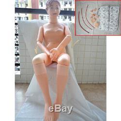 Allaitement Entraînement Teaching Mannequin Démonstration Modèle Anatomique